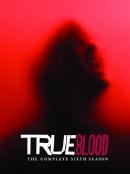 True blood [DVD]. Season 6