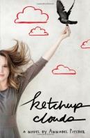 Ketchup clouds : a novel