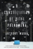 A Constellation Of Vital Phenomena : A Novel