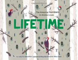 Lifetime : The Amazing Numbers In Animal Lives