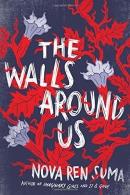 The walls around us : a novel