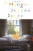 A Mango-shaped Space : A Novel