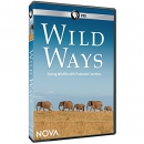 NOVA: Wild Ways DVD