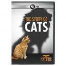 NATURE: The Story of Cats DVD