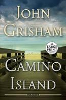 Camino Island [large print]