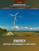 Energy : supplies, sustainability, and costs