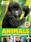 Animals : A Visual Encyclopedia