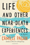 Life and other near-death experiences : a novel