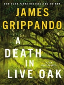 A death in Live Oak [eBook]