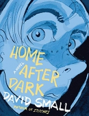 Home after dark : a novel