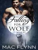Falling For a Wolf #2--BBW Werewolf Shifter Romance