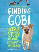 Finding Gobi