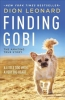 Finding Gobi : A Little Dog With A Very Big Heart