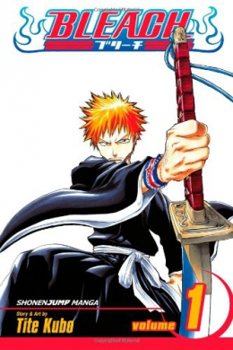 Bleach. 01, Strawberry And The Soul Reapers
