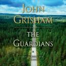 The guardians [CD book] : a novel