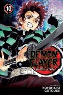 Demon slayer. Book 10, Human and demon