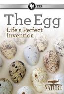 The egg [DVD]
