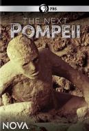 The next Pompeii [DVD]