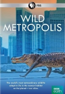 Wild metropolis [DVD]