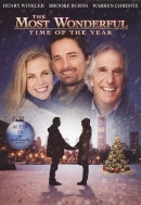 The most wonderful time of the year [DVD]