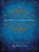 Antebellum Awakening