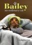 Bailey : No Ordinary Cat