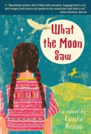 What the moon saw [downloadable ebook] / a novel