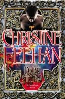 Dark storm : a Carpathian novel