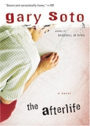 The afterlife [downloadable ebook]