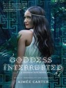Goddess interrupted [downloadable ebook]