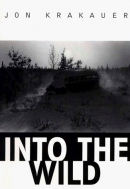 Into the wild [large print]